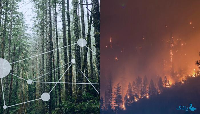 اینترنت اشیاء برای جلوگیری از آتش